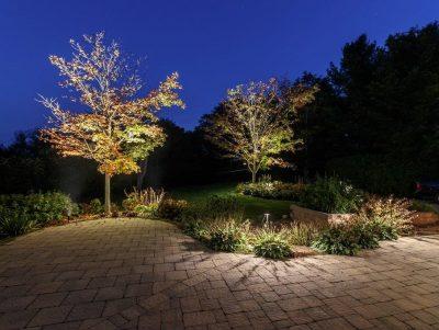 Downlighting - Yates Landscape Lighting