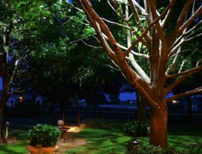 Moonlighting - Yates Landscape Lighting